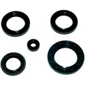 Keerring Set Honda Pantheon 125/150 2T