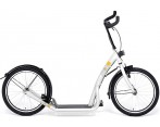 City Step Bike 2 Go